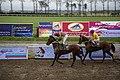 مسابقات اسب دوانی گنبد کاووس Horse racing In Iran- Gonbad-e Kavus 19.jpg