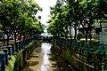 位於新店安坑碧安街與民安街旁的永豐圳區段.JPG