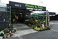 庞森比花卉中心 Ponsonby Plant Centre - panoramio.jpg