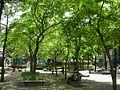 捷運中山站線形公園 - panoramio (1).jpg