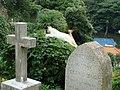横浜外国人墓地 - panoramio.jpg