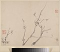 清 李方膺 墨梅圖 冊-Album of Blossoming Plum MET DP211116.jpg