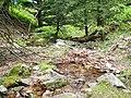 金華山登山道の湧き水 - panoramio.jpg