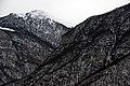 -Tartar Canyon S-N 01.jpg