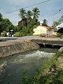 01873jfPinagbarilan Cantulinan Irrigation Baliuag Bulacan Dikes Roadfvf 28.JPG