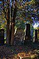 025 - Wien Zentralfriedhof 2015 (22837697457).jpg