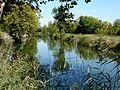 1044 - Canal de Charras - St Laurent de la Prée.jpg