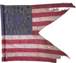 111th New York Volunteer Infantry Regiment - 111th New York Infantry Regiment Guidon
