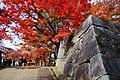 171103 Morioka Castle Morioka Iwate pref Japan15s3.jpg