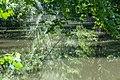 180521-08 Rems-Spiegel.jpg