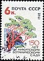 1962. 150 лет Никитскому ботаническому саду. Земляничник.jpg