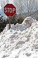 2010-365-30 Don't Stop Snowing! (4317091721).jpg