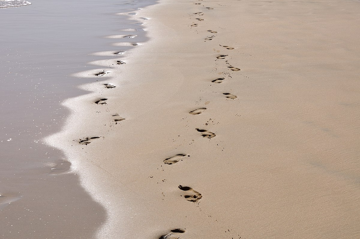 Footprints Poem Wikipedia