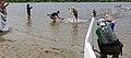 2015-05-31 11-57-56 triathlon.jpg