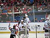2015 NHL Winter Classic IMG 8080 (15701315823).jpg