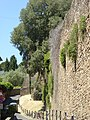 2016-06-20 Firenze 26.jpg