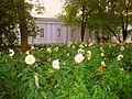 286. St. Petersburg. Stables housing on Elagin Island.jpg