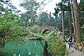 558, Taiwan, 南投縣鹿谷鄉內湖村 - panoramio (11).jpg