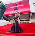 70 eme Festival du film Cannes.jpg