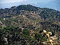 A@a agios theodoros area limassol cy - panoramio (12).jpg