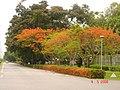 AIT - panoramio - Seksan Phonsuwan.jpg