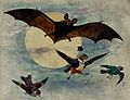 A bat and three fully dressed birds flying by moonlight. Wellcome V0050705.jpg