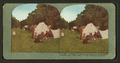 A glimpse of the quiet camp life of refugees in Golden Gate Park after the San Francisco disaster, from Robert N. Dennis collection of stereoscopic views.png