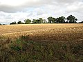 A harvested field - geograph.org.uk - 1532707.jpg