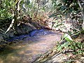 A little creek near Khindsi lake - panoramio.jpg