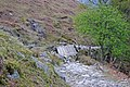 A rickety bridge - geograph.org.uk - 1259093.jpg