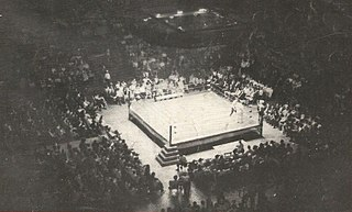 Wrestling ring Space in which a professional wrestling match occurs