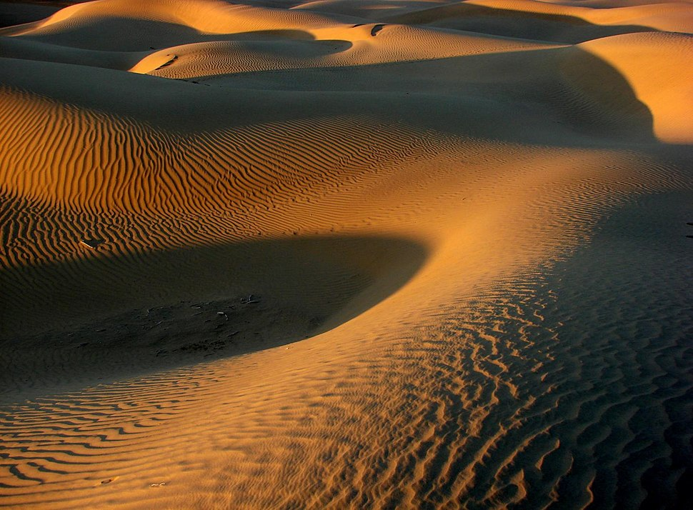 A sunset on the dunes of the Great Indian Thar Desert Rajasthan India