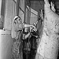 Abattoirs CNRZ 1960 Cliché Jean Joseph Weber-11.jpg