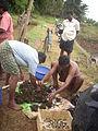 Adat Ombathumuri Paadam Thrissur DSCN0921.JPG