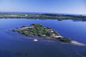 Pelican Island National Wildlife Refuge - Aerial of Pelican Island National Wildlife Refuge