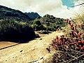 Agulhas Negras - Parque Nacional do Itatiaia.jpg
