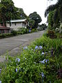 Alitagtag,Batangasjf1394 11.JPG