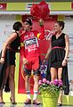 Alleur (Ans) - Tour de Wallonie, étape 5, 30 juillet 2014, arrivée (C61).JPG