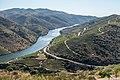 Alto Douro Vinhateiro DSC00160 (37170494401).jpg