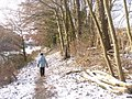 Am Teltowkanal (By the Teltow Canal) - geo.hlipp.de - 32108.jpg