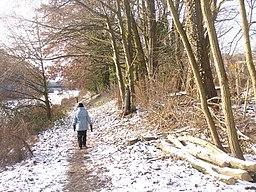 Am Teltowkanal (By the Teltow Canal) - geo.hlipp.de - 32108