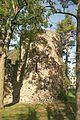 Amoeneburg Schlossruine Turm 20110924 Emha 3266.jpg