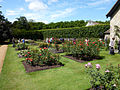 Anglesey Abbey Rose Garden.jpg