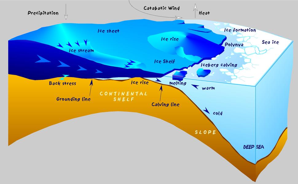 Antarctic shelf ice hg
