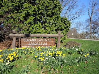 Durand Eastman Park County park in Monroe County, New York