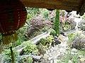 Arboretum v Lesnom Grode - panoramio.jpg