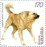 գամփռի նկարով 1999 թ. ՀՀ փոստային նամականիշ