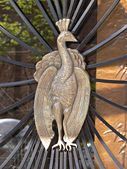 Art Nouveau Peacock Denver CO USA 3742.JPG