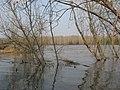 Asinovsky District, Tomsk Oblast, Russia - panoramio (164).jpg