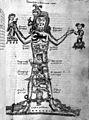 Astrological man. 15th century manuscript. Wellcome M0007102.jpg